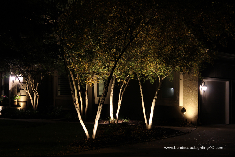 Landscape-Lighting-IMG_5928