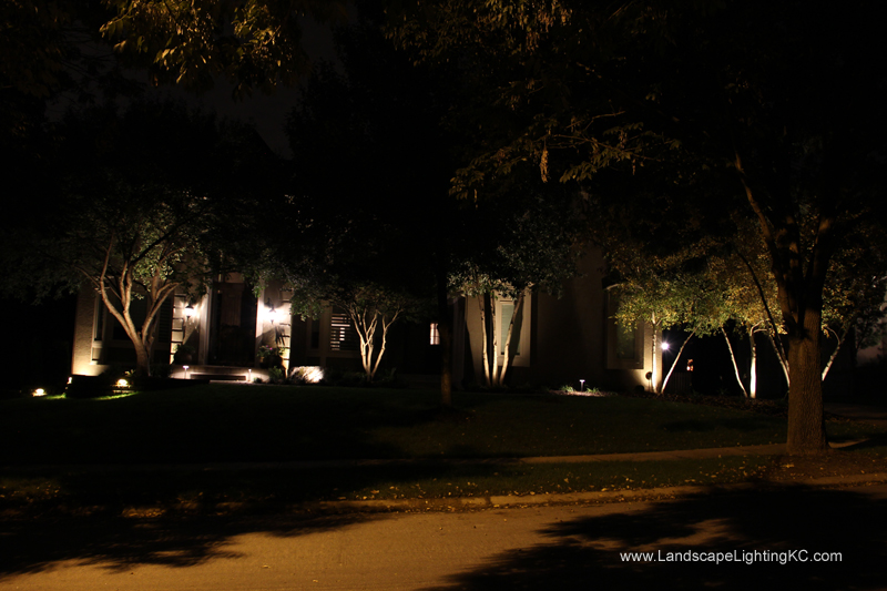 Landscape-Lighting-IMG_5929