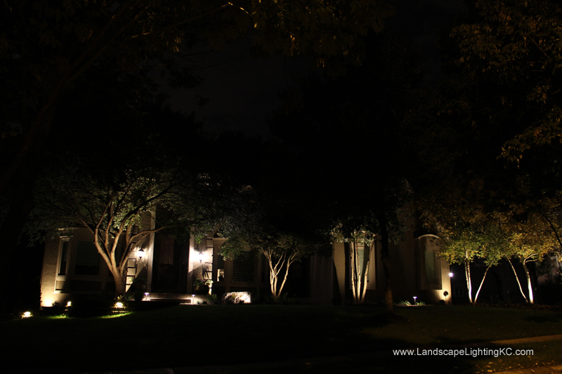 Landscape-Lighting-IMG_5930
